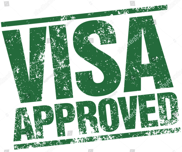 visa success